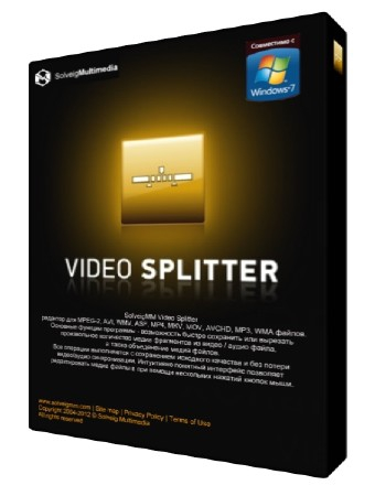 SolveigMM Video Splitter 6.1.1710.05 Business Edition Beta