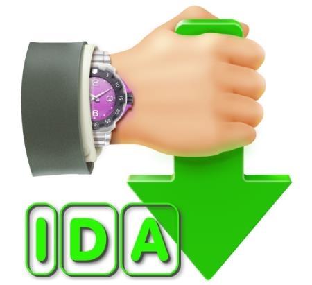 Internet Download Accelerator Pro 6.17.4.1625 Final + Portable