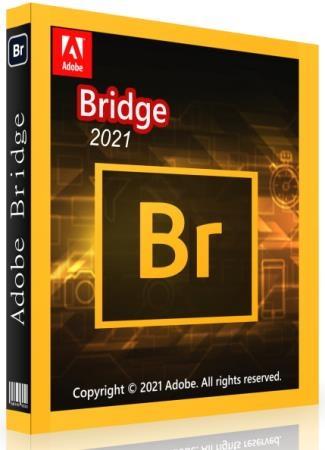 Adobe Bridge 2021 11.1.0.175